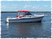 Fish master charters your fishing guide and diving for Deep sea fishing jacksonville fl